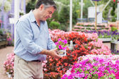 Man picking up a flower — Stock Photo