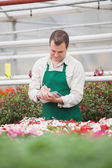 Man taking notes in greenhouse — Stock Photo