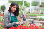 Employee checking flowers with tablet pc in garden center — Stock Photo