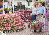 Couple pushing a trolley in garden centre — Stock Photo
