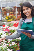 Smiling worker checking flowers in garden center — Stock Photo
