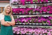 Florist standing amongst shelves — Stock Photo