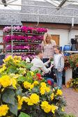 женщина и ребенок, принимая цветочный горшок от работника — Стоковое фото