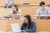 Students in a lecture with one using laptop — Stock Photo