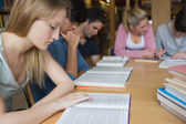 Students studying as a group — Stock Photo