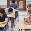 Students sitting a test — Stock Photo #23100352