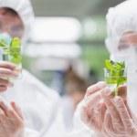Ven a dos estudiantes en el laboratorio sosteniendo vasos con — Foto de Stock
