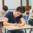Students in an exam — Stock Photo #23102500