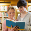 Stock Photo: Couple standing looking at a book