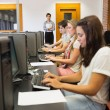 Students sitting at the computer concentrating — Stock Photo