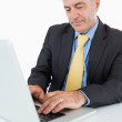 Businessman using laptop — Stock Photo #23106614