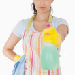Woman spraying cleaner — Stock Photo #23109046