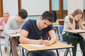Students in an exam — 图库照片