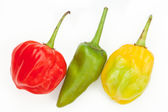 Three chile's in a row — Stock Photo