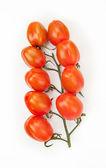 Vine of tomatoes — Stock Photo