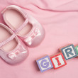 Baby girl spelled out in blocks with pink booties — Stock Photo #24061179