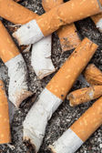 Close up of cigarette butts — Stock Photo