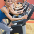 Stock Photo: Four women on exercise bikes