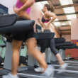 Women running on treadmill - Stock Photo