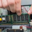 Hand fixing ram — Stock Photo