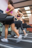 Women running on treadmill — Stock Photo