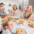 Happy family raising their glasses — Stock Photo #24100895