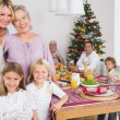 Three generations of women at christmas time - Stock Photo