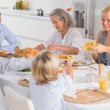 Happy Family eating the thanksgiving dinner — Stock Photo #24101387