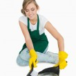 Smiling young maid using brush and dust pan — Stock Photo #24103309