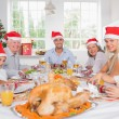Smiling family around the dinner table at christmas — Stock Photo #24104439