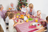 Adults raising their glasses at christmas dinner — Stock Photo