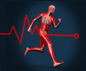 Digital body running against a heart rate line — Stock Photo