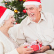 Stock Photo: Elderly couple exchanging christmas gifts