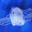 Fingerprint on digital blue background - Stock Photo