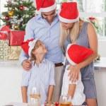 Happy family at christmas — Stock Photo #24112619