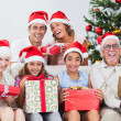 Family exchanging christmas presents — Stock Photo #24113147