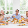 Family toasting at thanksgiving - Stockfoto