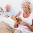 Aged couple reading a book and newspaper - Stock Photo