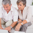 Old couple using a laptop - Stock Photo