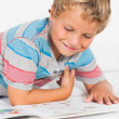 Stock Photo: Happy boy reading storybook