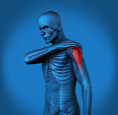 Highlighted shoulder pain of blue human — Stock Photo