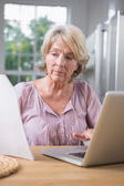 Focused mature woman using her laptop — Stock Photo