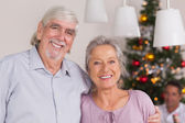 Happy grandparents at christmas — Stock Photo