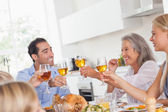 Family raising their glasses at thanksgiving dinner — Stock Photo
