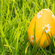 Orange easter egg in the grass — Stockfoto