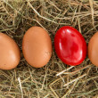 Red egg on straw with plain ones — Stock Photo