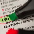 Stock Photo: CEO definition highlighted and circled in dictionary