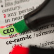 CEO definition highlighted and circled in the dictionary — Stock Photo