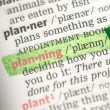 Planning definition highlighted in green — Stock Photo #24146563