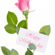 Pink rose with stalk and leaves and mothers day message — Stock Photo